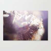 cannabis Canvas Prints featuring cannabis 01 by Kristen Angelo