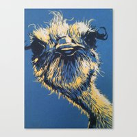 ostrich Canvas Prints featuring ostrich by Theresa Morgan