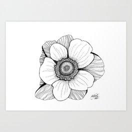 Anmone flower Art Print