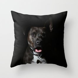 Stafford Throw Pillow