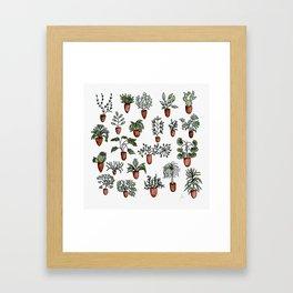 Succulent Houseplants in Terracotta Pots, Watercolor Cacti & Plant Wall Art Framed Art Print