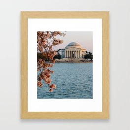 Cherry Blossoms at the Jefferson Framed Art Print