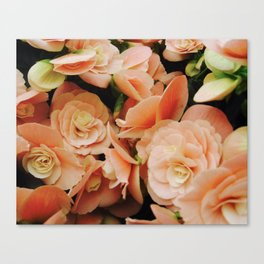 Ravishing Roses Canvas Print