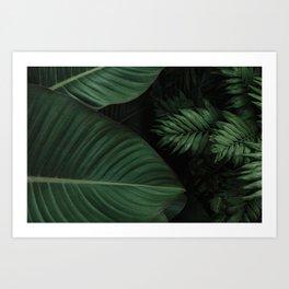 Tropical Beauty // Tropical Boho Leaves meets Minimalist Patterns Art Print