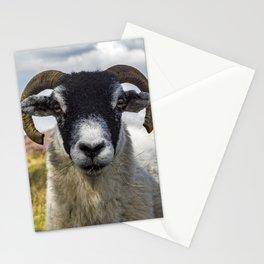 Can I Help Ewe? Stationery Cards