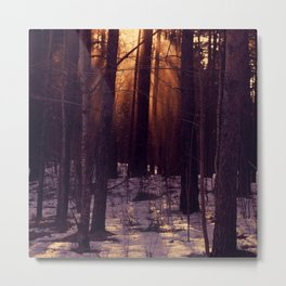 Sunset in the evening Metal Print