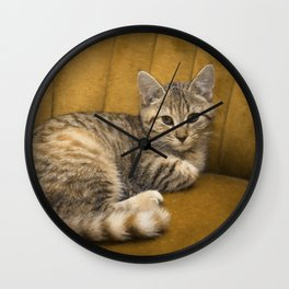 Cinnamon Tabby Kitten Wall Clock