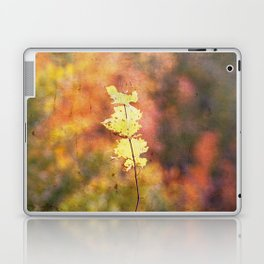 Seasonal Closeup - Autumn Laptop & iPad Skin