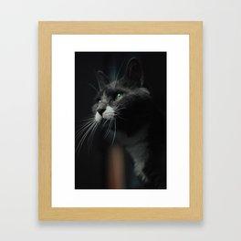 Wise Framed Art Print
