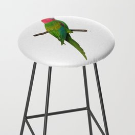 Colorful Parrot 2 Bar Stool
