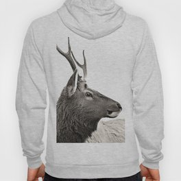 Dramatic Deer Hoody