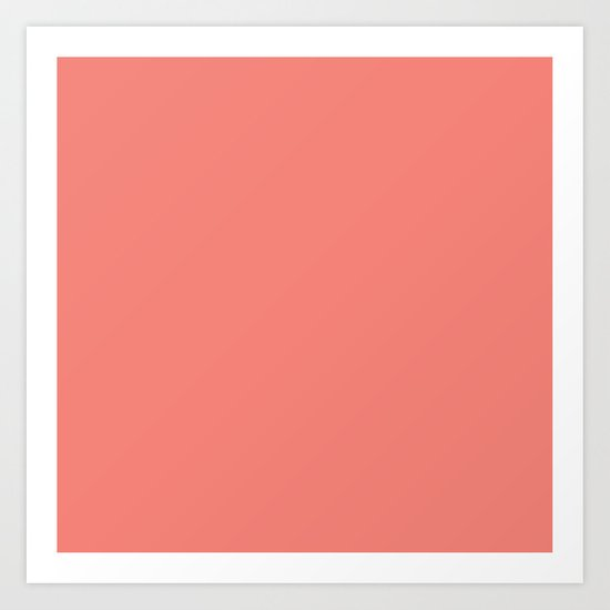 Coral Pink Solid Color by skylinesquirrel
