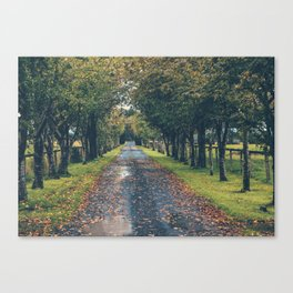 Athy, Ireland Canvas Print
