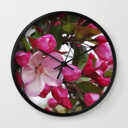 Spring blossoms - Strawberry Parfait Crabapple Wall Clock