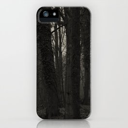 Winterscenery iPhone Case