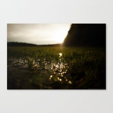 The Vast Insignificance Canvas Print