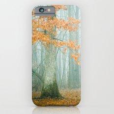 Autumn Woods iPhone 6s Slim Case