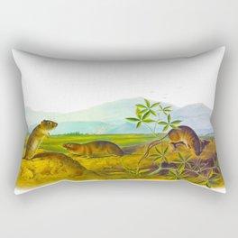 Arvicola Townsendii & Townsend's Arvicola Rectangular Pillow