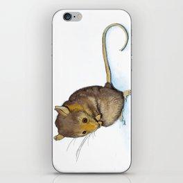 Mountain Pygmy-possum (Burramys parvus) Australian Native iPhone Skin