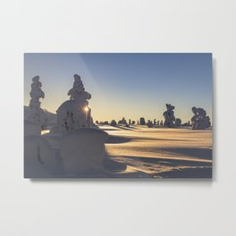 Snow covered Lapland in clear sunny day sunset Metal Print