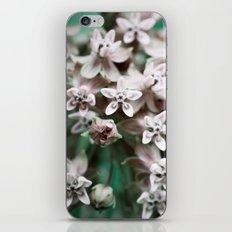 Lavender Dawn iPhone & iPod Skin