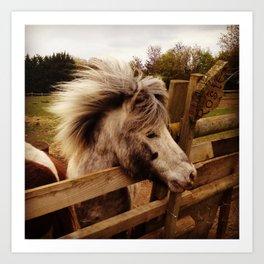 Windswept Pony Art Print