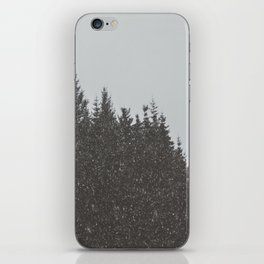 Wintery Forest iPhone Skin
