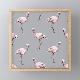 Simply Flamingo on Concrete Gray Framed Mini Art Print