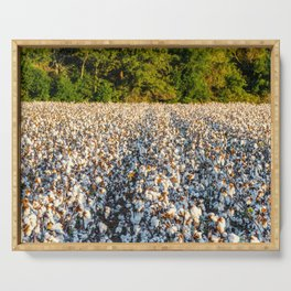 Cotton Field 17 Serving Tray