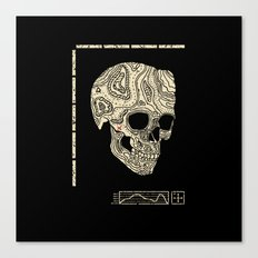Skullography  Canvas Print