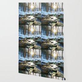 Wintry Light Wallpaper