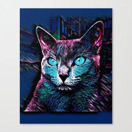 CAT COLORFUL Canvas Print