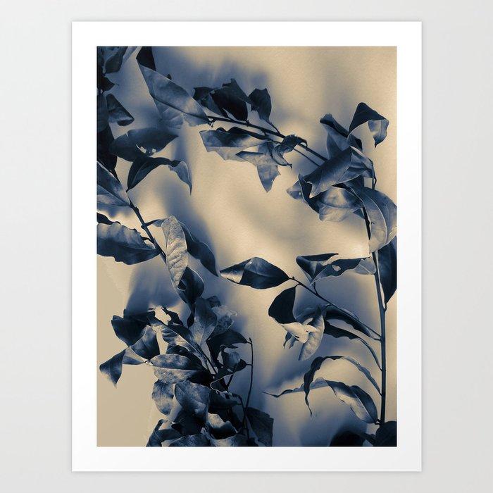 Bay leaves Art Print