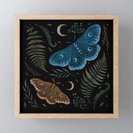Moths and Ferns Framed Mini Art Print