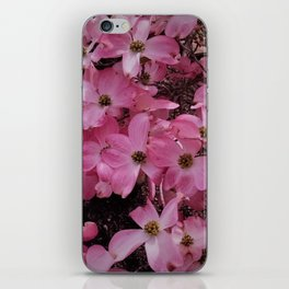 Pink Dogwood Blossoms iPhone Skin