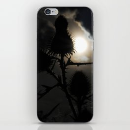 The Dream Catchers iPhone Skin