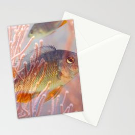 Love is a Fish Stationery Cards