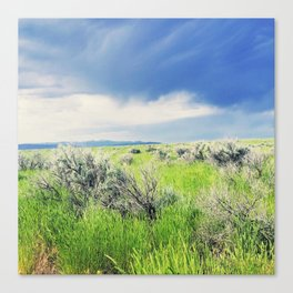 Sagebrush Steppe Before the Storm Canvas Print