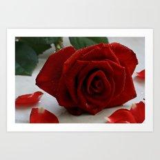 Romancing Rose Art Print