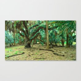 Wonderland.  Canvas Print