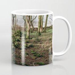 Woods in Ireland Coffee Mug