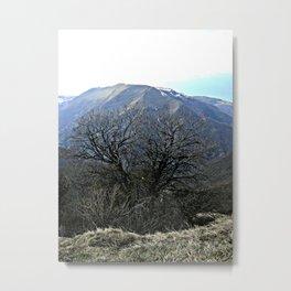 Shrub with the mountain views Metal Print
