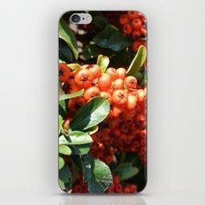Brightening II iPhone & iPod Skin