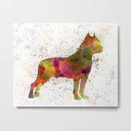American Staffordshire Terrier in watercolor Metal Print