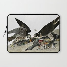 12,000pixel-500dpi - Peregrine Falcons Drawn - John James Audubon Laptop Sleeve