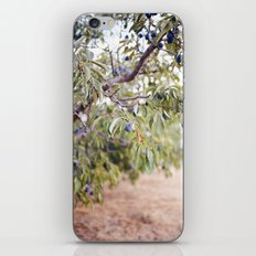 PLUM FARM iPhone & iPod Skin