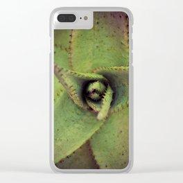 Succulent cactus close-up Clear iPhone Case