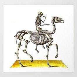 Horse Skeleton & Rider Art Print