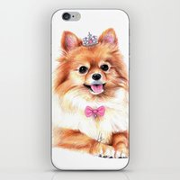 pomeranian iPhone & iPod Skins featuring Pomeranian Princess by 13 Styx