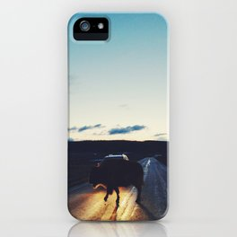 Bison in the Headlights iPhone Case